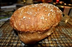 Honey Oat Bread - cooling