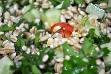 Soaked Barley & Herb Salad