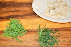 Tofu and scallions