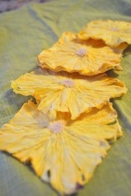 Dried Pineapple