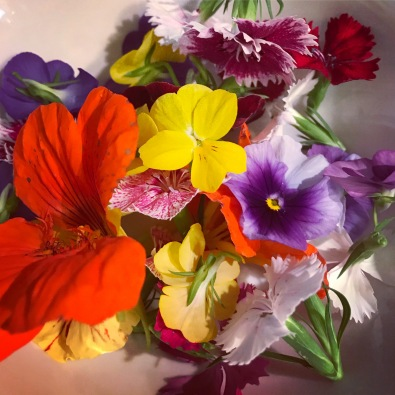 Edible flowers from the garden.